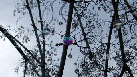 ガラスの森_クリスタルツリー.jpg